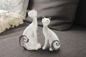 Cica fehér-ezüst 2 fajta