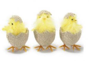 Csibe juta tojásban