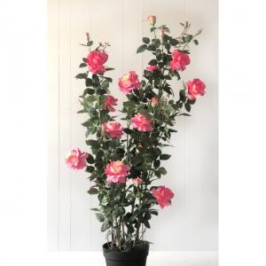 Mű cserepes rózsa
