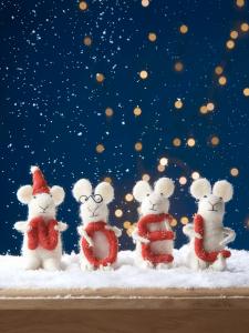 Noel egerek