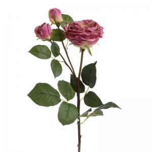 Szálas rózsa rózsaszin