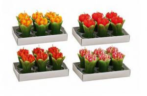 Tulipán alakú gyertya