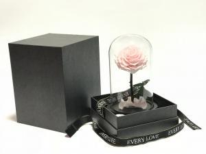 Üvegbúrás örökrózsa rózsaszín